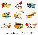 autumn logos  tags  labels.... | Shutterstock .eps vector #713727022