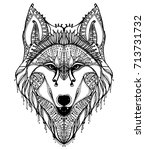 portrait of a wolf. the head of ... | Shutterstock .eps vector #713731732