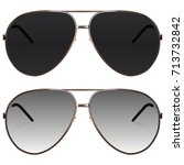realistic sunglasses set.... | Shutterstock .eps vector #713732842