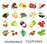 set of superfood fruit. vector... | Shutterstock .eps vector #713792935