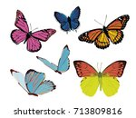set of color bright butterflies | Shutterstock .eps vector #713809816