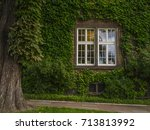 A Window On The Wall With Ivy.