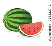 watermelon. vector illustration. | Shutterstock .eps vector #713823742
