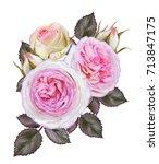 flower composition. wreath ... | Shutterstock . vector #713847175
