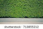 green bush leaf wall texture... | Shutterstock . vector #713855212
