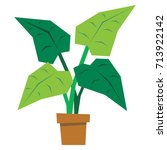 vector cartoon plant isolated... | Shutterstock .eps vector #713922142