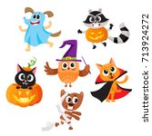 set of cute funny animal... | Shutterstock .eps vector #713924272