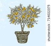 orange tree in basket. vintage... | Shutterstock .eps vector #714022375