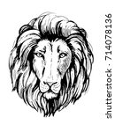 sketch of lion head. hand drawn ... | Shutterstock .eps vector #714078136