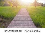 corridor and coconut in the ... | Shutterstock . vector #714181462
