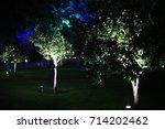 Small photo of illuminated trees