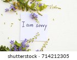 i am sorry message card with... | Shutterstock . vector #714212305