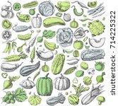 set of various hand drawn... | Shutterstock .eps vector #714225322