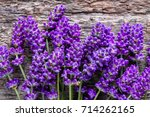 background with lavender ... | Shutterstock . vector #714262165