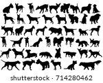 Stock vector vector isolated silhouette of a dog collection 714280462