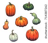 Collection Of Pumpkins  Gourds...