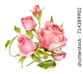 Stock photo isolated composition of watercolor pink roses 714389902