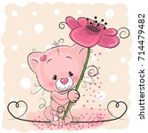 greeting card cat with flower... | Shutterstock .eps vector #714479482
