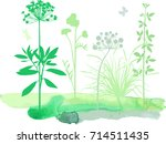 floral composition | Shutterstock .eps vector #714511435