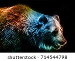 digital drawing of a bear | Shutterstock . vector #714544798