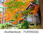 colorful leaves in autumn  and... | Shutterstock . vector #714550102