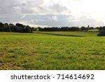 Small photo of Irish farm field