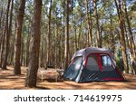 The Camping Tent In The Pine...