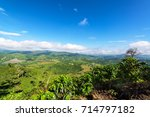 landscape of coffee farms with... | Shutterstock . vector #714797182