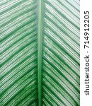 pattern leaf surface for... | Shutterstock . vector #714912205