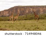 hell's gate national park ... | Shutterstock . vector #714948046