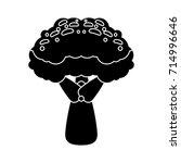 broccoli icon | Shutterstock .eps vector #714996646