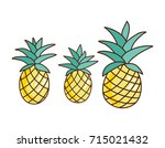 tropical ananas pineapple fruit ... | Shutterstock . vector #715021432