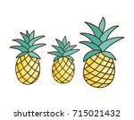 tropical ananas pineapple fruit ... | Shutterstock . vector #715021432