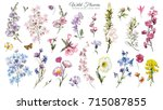 big set watercolor elements  ... | Shutterstock . vector #715087855