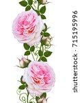 vertical floral border. pattern ...   Shutterstock . vector #715195996