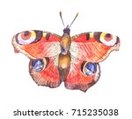 watercolor butterfly  ... | Shutterstock . vector #715235038