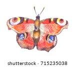 watercolor butterfly  ... | Shutterstock . vector #715235038