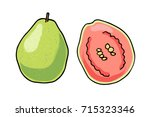 vector illustration of juicy... | Shutterstock .eps vector #715323346