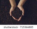 man's hands holding coffee beans | Shutterstock . vector #715366885