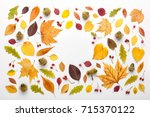 Autumn Frame Made Of Leaves An...