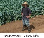 watsonville  california  usa  ...   Shutterstock . vector #715474342