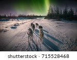 Stock photo a team of six husky sled dogs running on a snowy wilderness road in the canadian north under the 715528468