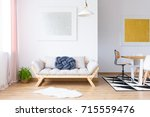 plant and white fur near beige... | Shutterstock . vector #715559476