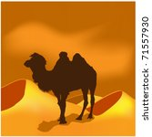 camels in sahara | Shutterstock .eps vector #71557930