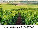 champagne vineyard  france. | Shutterstock . vector #715627348