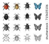 ladybug  colorado beetle ... | Shutterstock .eps vector #715635106
