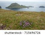 faroe island | Shutterstock . vector #715696726