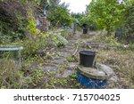 overgrown garden   Shutterstock . vector #715704025