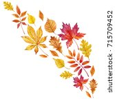 watercolor autumn element... | Shutterstock . vector #715709452