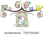 owl cute in vector and on bird...   Shutterstock .eps vector #715753105
